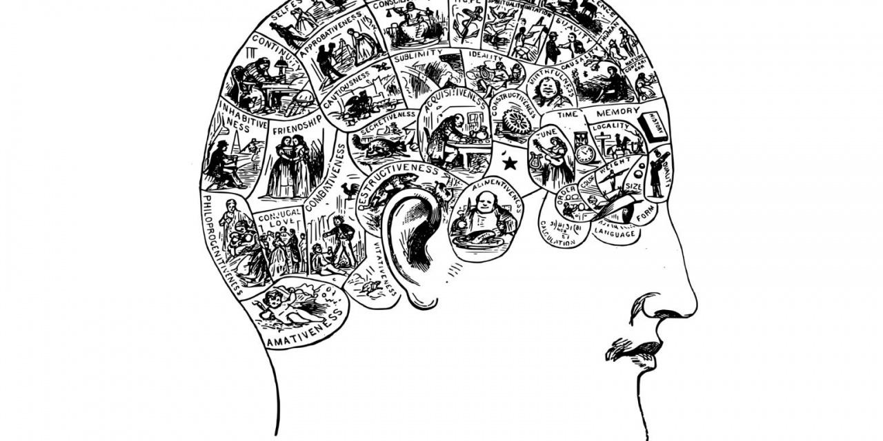 Understanding the Mindset of the Investor