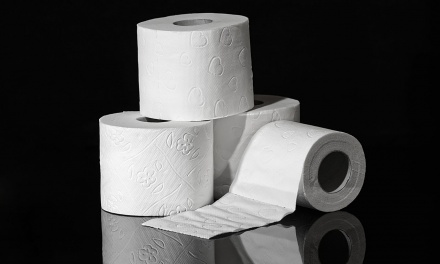 The Great TP Crisis of 2020