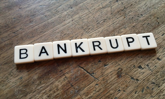 THE BASICS OF BANKRUPTCY: Acquiring bankruptcy loan, terms, and procedures. BK Chapter 13