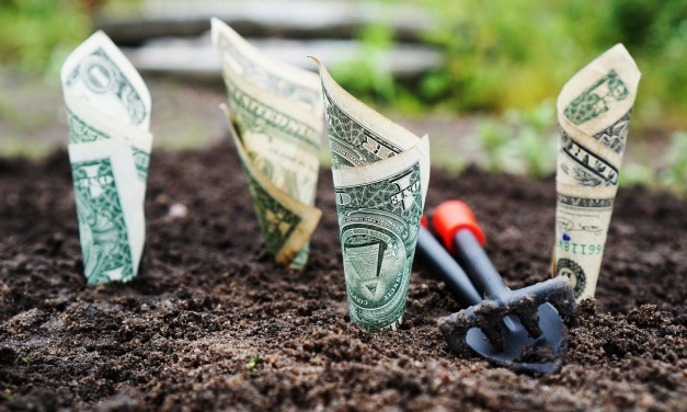 Self-directed IRA: How to diversify and grow your retirement portfolio