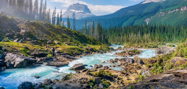 Which national parks are on your bucket list?